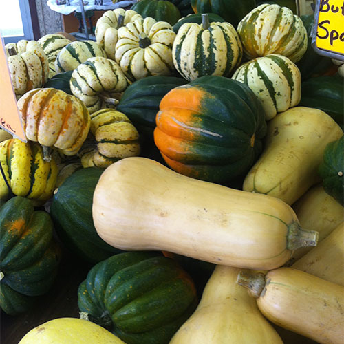 Plenty of pumpkins, mums, gourds, fall vegetables and fall decorations at Tom Strain & Sons Farm Market and Garden Center, 5041 Hill Avenue, Toledo, Ohio